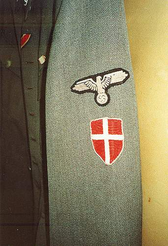 Click image for larger version.  Name:FreikorpsDanmarkOffTunicVariant badges.jpg Views:331 Size:123.4 KB ID:550209