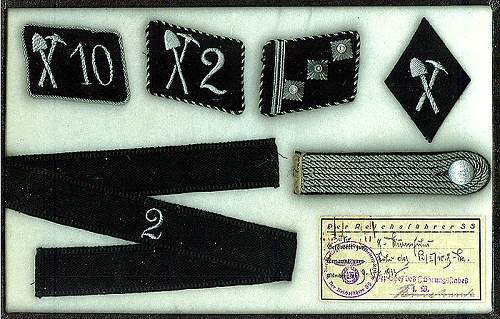 Delich Treasures:   Pionier insignia of the Allgem. SS.