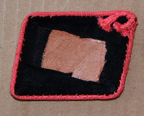 SS Collar tab with pink piping