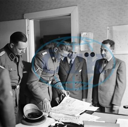 Allgem. SS officers in grey uniform