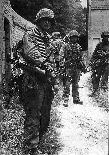 Need to know what camo the Waafen-SS used in Normandy. Very specific!