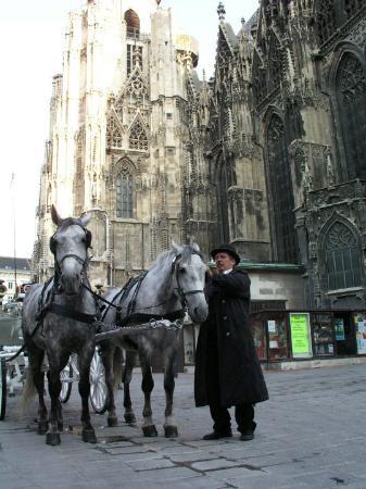 Name:  historic-centre-of-vienna.jpg Views: 146 Size:  34.7 KB