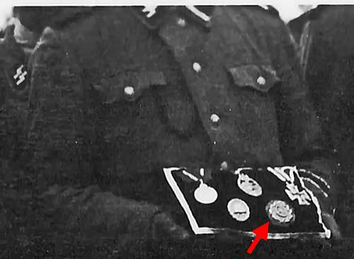 SS funeral photo. Could someone tell me what the decoration with the red arrow is?