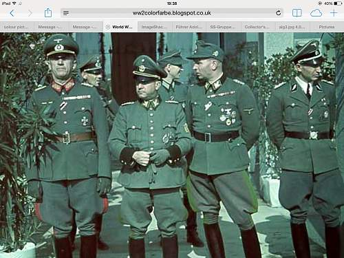 Wanted Colour pictures of SS generals wearing lampassen.