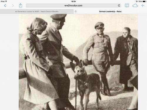 Is Sepp Dietrich wearing Lampassen or a shadow