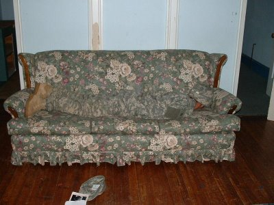 Name:  camojncouch.jpg