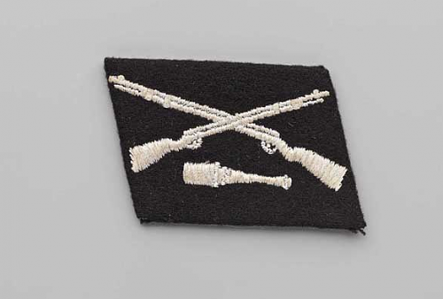 Click image for larger version.  Name:36th waffen ss tab.PNG Views:396 Size:146.8 KB ID:776007