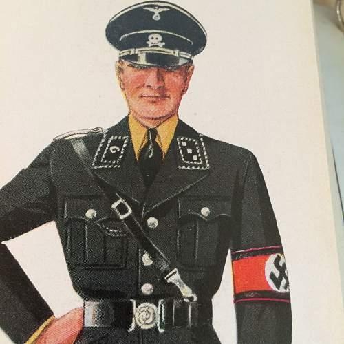 Die Uniformen der Braunhemden