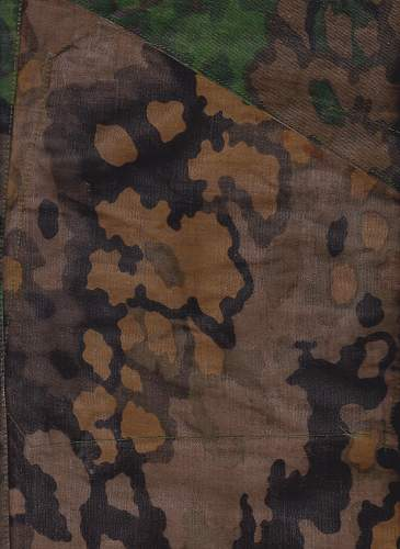 Which Type WSS Camouflage?