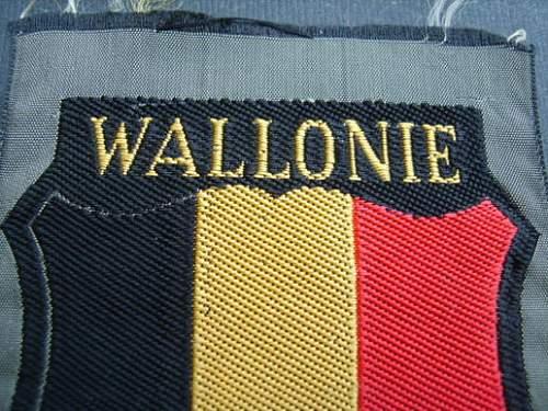 Belgian Wallonien SS Freiwillig Shield - REAL or FAKE?
