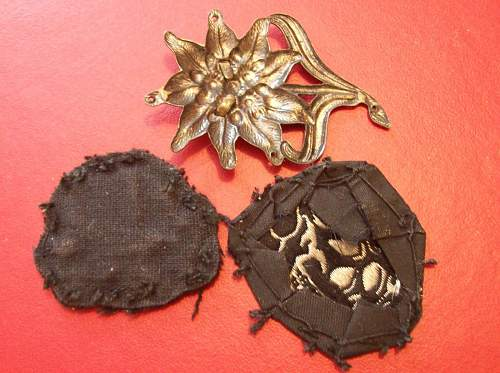SS Badge and Skull