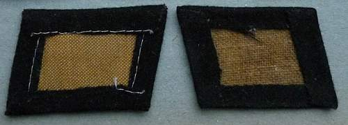 Embroidered SS Runic Tab