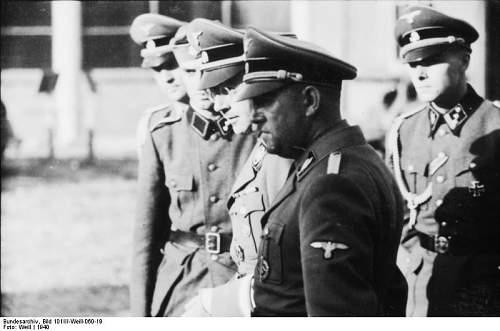 Click image for larger version.  Name:peiper-himmler-France-1940-1.jpg Views:181 Size:104.8 KB ID:806999