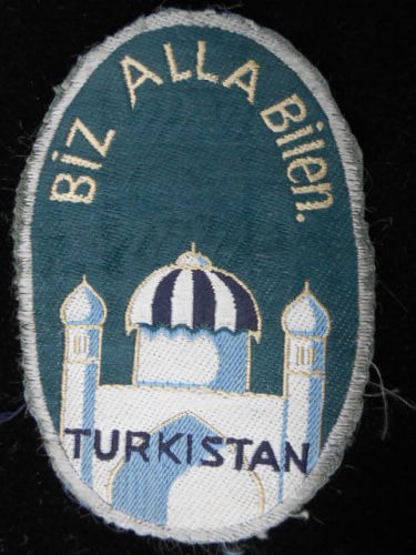 Can anyone advise if this Volunteer patch is Genuine ??
