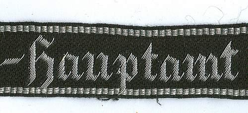 Uniform study of the SS-Wirtschafts-Verwaltungshauptamt (WVHA) circa June 1942
