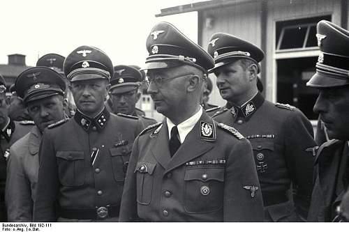 Click image for larger version.  Name:Bundesarchiv_Bild_192-111,_KZ_Mauthausen,_Besuch_Heinrich_Himmler.jpg Views:2204 Size:54.6 KB ID:89886