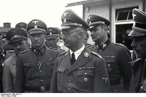 Info needed : SS concentration camp skull K collar tabs totenkop