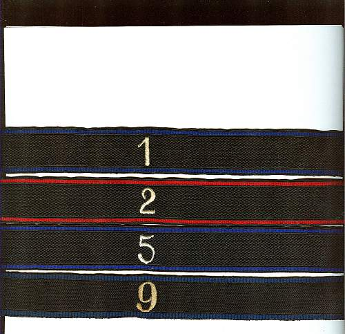 Cuff titles of the Allgem. SS with colored borders.