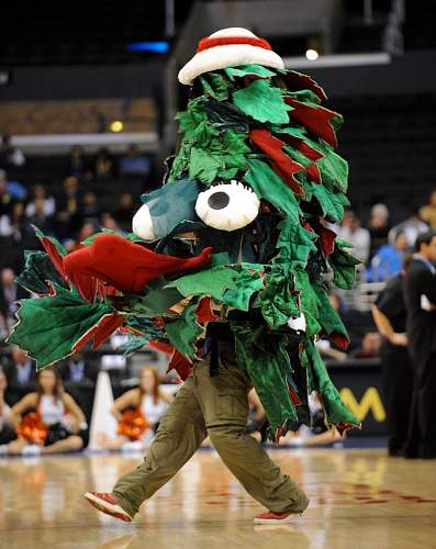 Click image for larger version.  Name:Stanford tree.jpg Views:34 Size:154.4 KB ID:914849