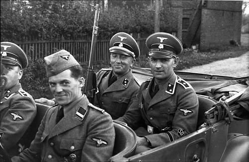 Click image for larger version.  Name:Bundesarchiv_Bild_101I-380-0069-37,_Polen,_Verhaftung_von_Juden,_SD-Männer.jpg Views:126 Size:70.6 KB ID:922572
