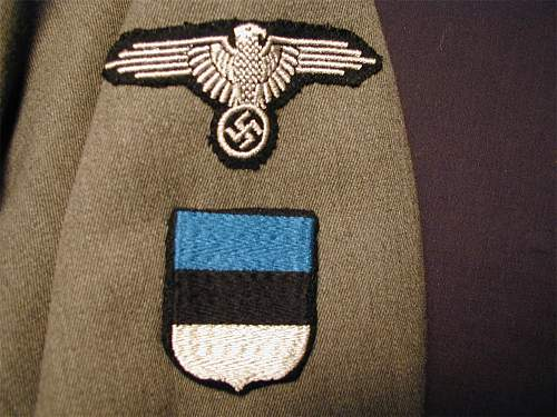 Click image for larger version.  Name:SS-Hstuf Inf Estonian Sleeve small.jpg Views:374 Size:230.5 KB ID:941567