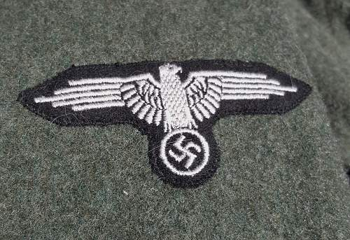 Waffen SS tunic for review...