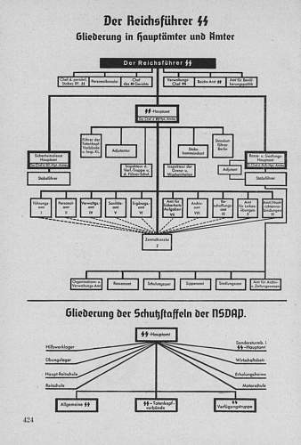 Organization of the SS from Org. buch. NSDAP