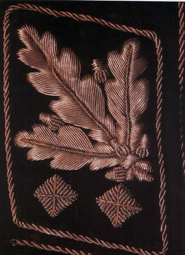 SS Gruppenfuehrer Schaub jacket