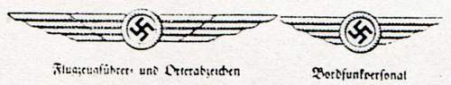 SA/SS pilots wings SS Fliegersturm