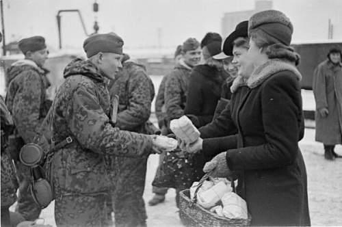 Estonian SS volunteers and history
