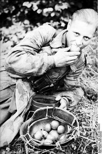 Click image for larger version.  Name:399px-Bundesarchiv_Bild_101I-301-1953-31%2C_Nordfrankreich%2C_Soldat%2C_Obst_essend[1].jpg Views:419 Size:58.4 KB ID:123743