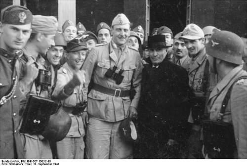 Click image for larger version.  Name:Bundesarchiv_Bild_101I-567-1503C-15%2C_Gran_Sasso%2C_Mussolini_vor_Hotel[1].jpg Views:313 Size:52.6 KB ID:123845