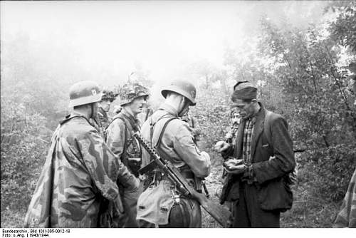 Click image for larger version.  Name:Bundesarchiv_Bild_101I-005-0012-18%2C_Jugoslawien%2C_Polizeieinsatz[1].jpg Views:1320 Size:63.1 KB ID:123951
