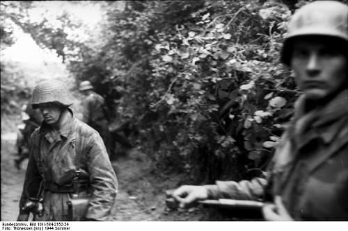 Click image for larger version.  Name:Bundesarchiv_Bild_101I-584-2152-24%2C_Frankreich%2C_Soldaten_hinter_Geb%C3%BCsch[1].jpg Views:814 Size:55.9 KB ID:123955