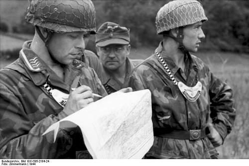 Click image for larger version.  Name:Bundesarchiv_Bild_101I-585-2184-24,_Frankreich,_Normandie,_Feldgendarme.jpg Views:448 Size:53.2 KB ID:282526