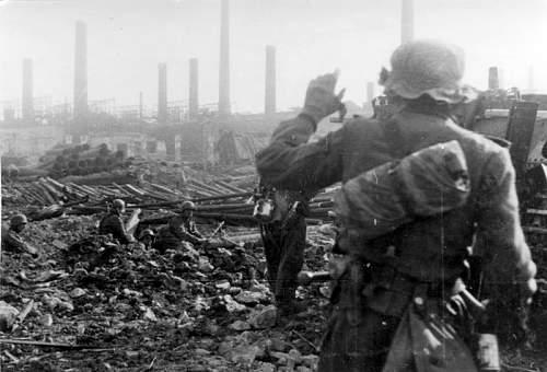 Click image for larger version.  Name:Bundesarchiv_Bild_146-1974-107-66,_Russland,_Kampf_um_Stalingrad,_Infanterie.jpg Views:301 Size:64.2 KB ID:362124