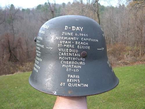 Vet Art Helmet for review.