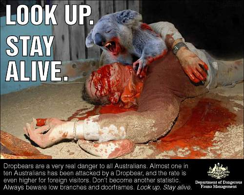 Click image for larger version.  Name:Government_Drop_Bear_Warning.jpg Views:89 Size:132.9 KB ID:510597