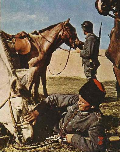 WWII Kavallerie troopers sword
