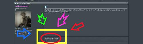 what does edit signature actually do.