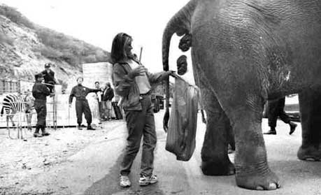 Name:  elephant.jpg Views: 203 Size:  20.2 KB