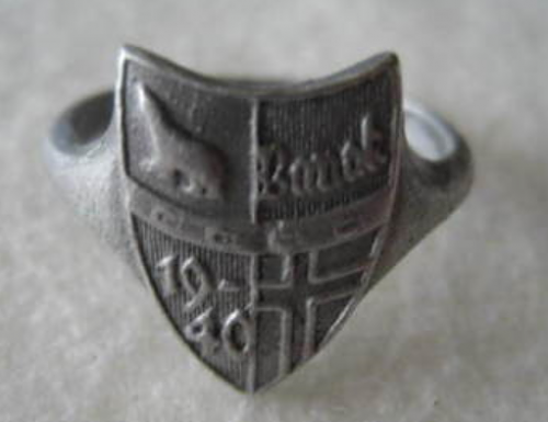 Click image for larger version.  Name:Banak Ring Front.png Views:89 Size:153.3 KB ID:935721
