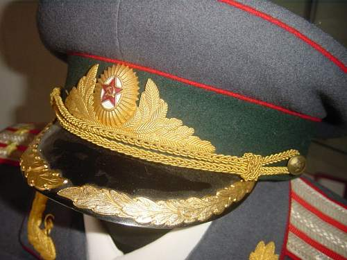 Click image for larger version.  Name:MEDICAL COLONEL M55 PARADE UNIFORM 3.jpg Views:249 Size:77.0 KB ID:13489