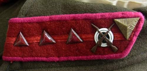 RKKA / NKVD collar insignia but what type?