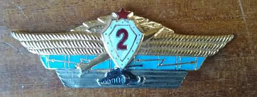 Combined specialist badge