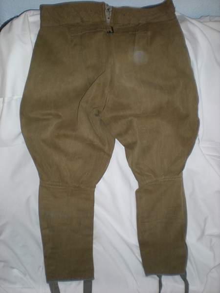 Sharovari breeches