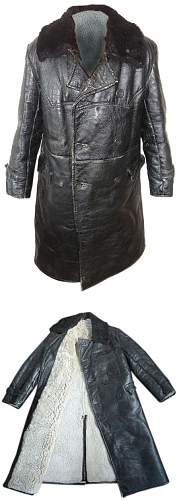 Click image for larger version.  Name:FurLeatherCoat2.jpg Views:431 Size:130.7 KB ID:355669