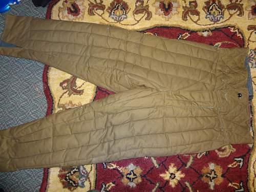 Telogreika trousers, original?