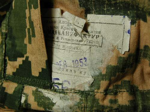 Click image for larger version.  Name:Camo202.jpg Views:111 Size:161.0 KB ID:87607
