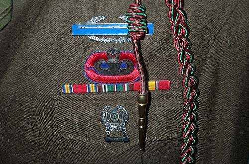 Click image for larger version.  Name:82nd & 17th Abn Tunic 004.jpg Views:1334 Size:128.0 KB ID:114266